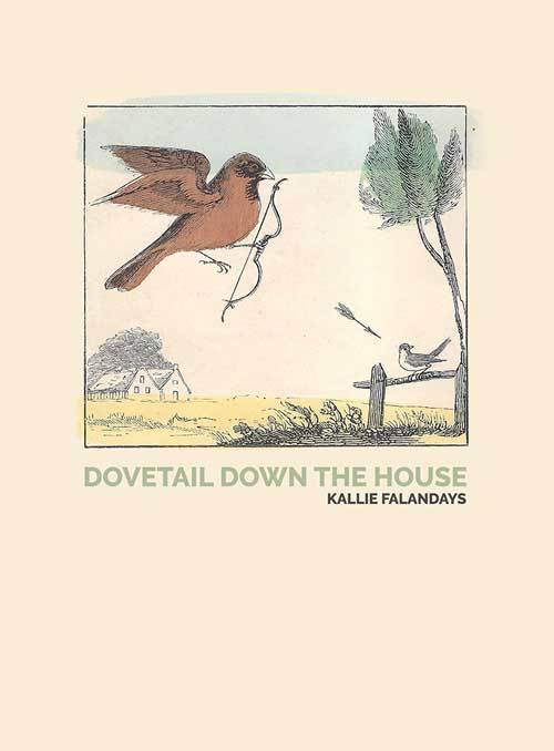 Dovetail Down the House cover image
